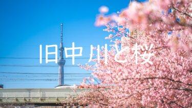 旧中川沿い河川敷で満開の河津桜とスカイツリーを撮ってきた話