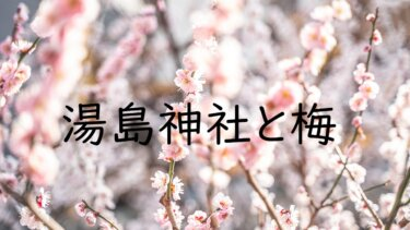 湯島天神(天満宮)で満開の梅を撮ってきた! 梅の撮り方のコツについて