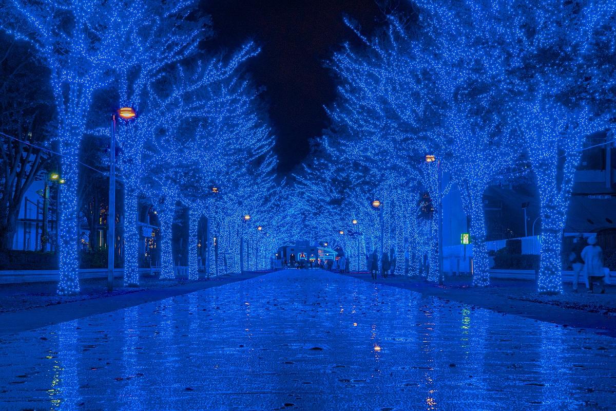 渋谷,青の洞窟,イルミネーション