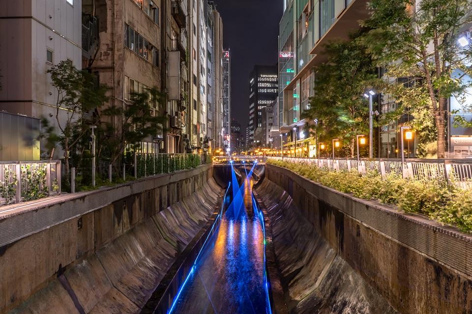 渋谷,川,イルミネーション