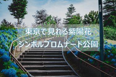 東京で見れる紫陽花「お台場 シンボルプロムナード公園」