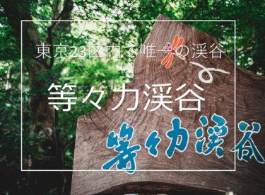 東京23区内で唯一の渓谷!等々力渓谷が最高の撮影スポットだった。