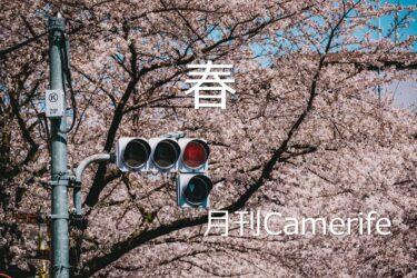 【月刊CameRife】2021年3月号 「春」