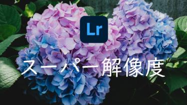 【Lightroom】写真の画質を強化する「スーパー解像度」とは 効果と使い方について
