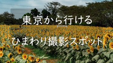 【2021年版】東京都内から行ける関東のひまわり撮影場所まとめ5選